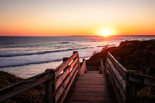 Immagine gratuita di acqua, legno, oceano