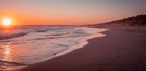 Free stock photo of beach, coast, ocean, people