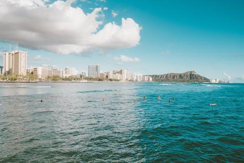 만, 바다, 사람의 무료 스톡 사진