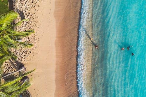 açık hava, deniz, deniz kıyısı içeren Ücretsiz stok fotoğraf
