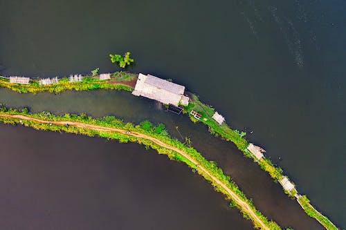Безкоштовне стокове фото на тему «архітектура, Безхребетні, берег моря, відпустка»