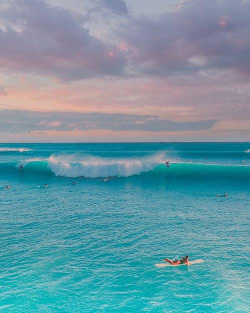 Gratis arkivbilde med bølger, glede, hav
