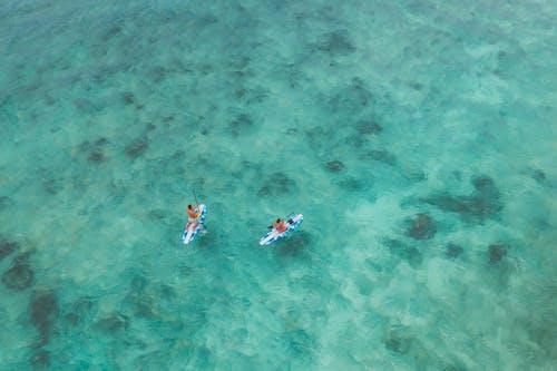 People Surfboarding on Sea
