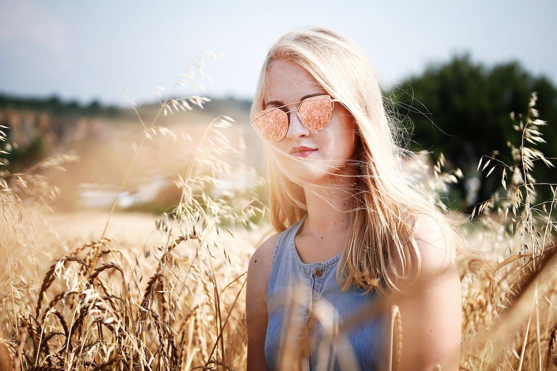 adâncime de câmp, apus, blond
