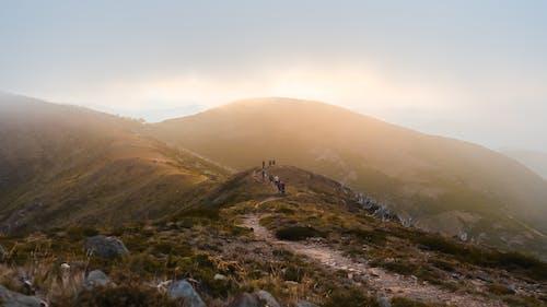 Immagine gratuita di acqua, alba, avventura, collina