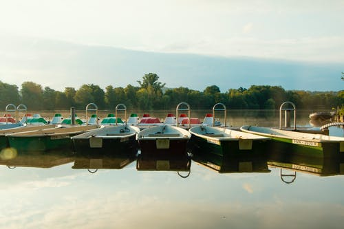 Free stock photo of boats, lake, trees