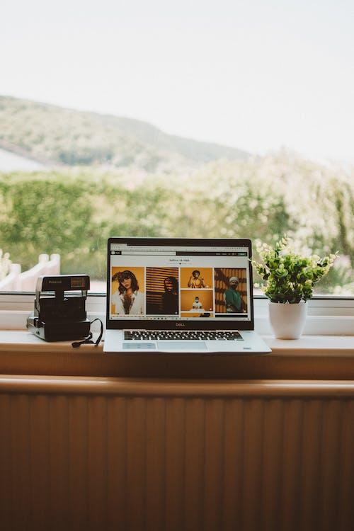 Základová fotografie zdarma na téma architektura, cestování, design interiéru, dřevo