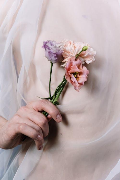 Fotobanka sbezplatnými fotkami na tému bledý, človek, dekoratívny, koža