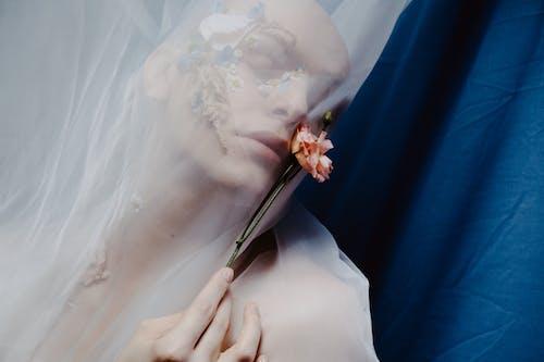 Fotobanka sbezplatnými fotkami na tému krása, kreatívny portrét, kúzlo osobnosti, kvetinový