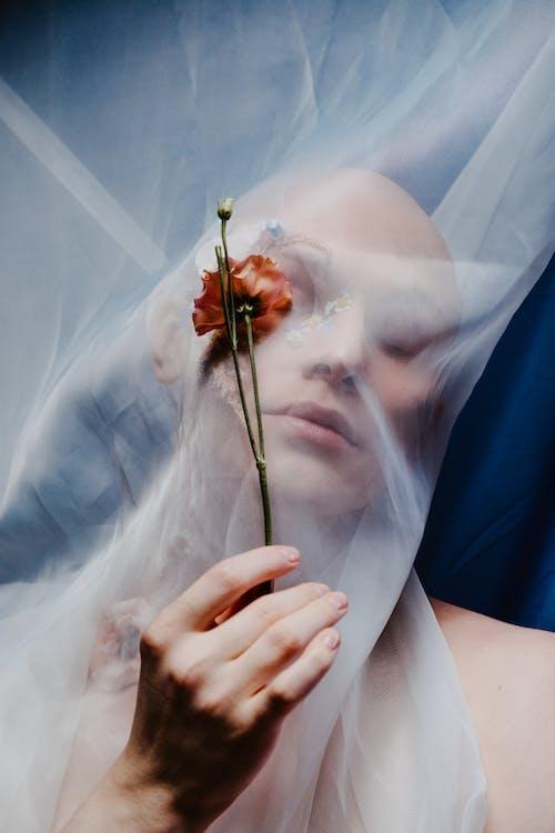 Fotobanka sbezplatnými fotkami na tému dekoratívny, holohlavý, krása, kreatívny portrét