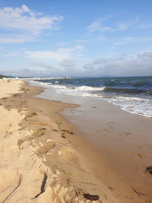Free stock photo of beach, blue, fale