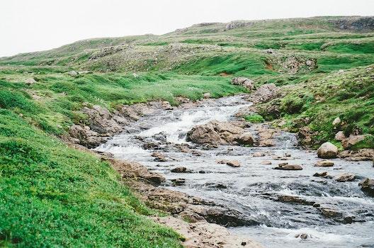 Free stock photo of nature, brook, creek, stream