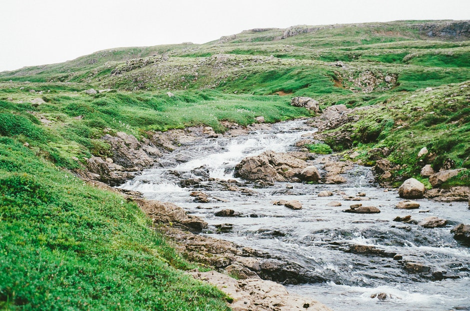 brook, creek, nature