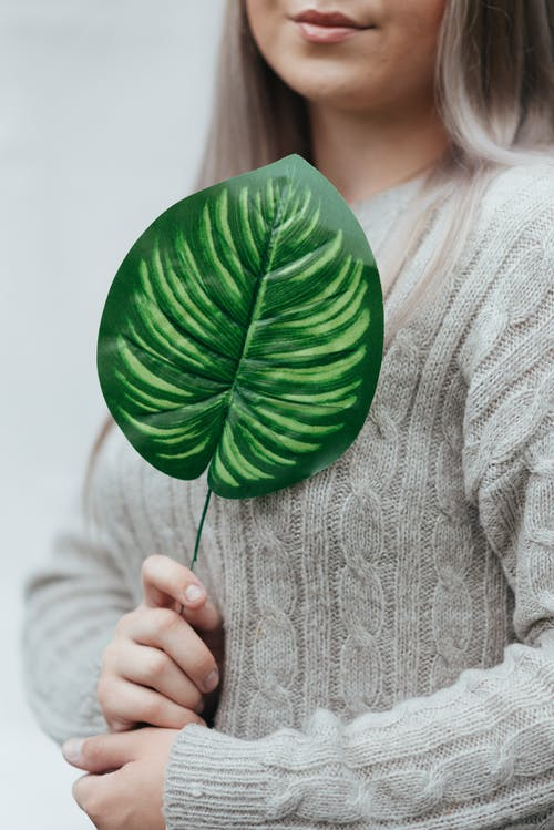 Crop unrecognizable female with makeup in knitted sweater showing colorful plant leaf with ornament on white background