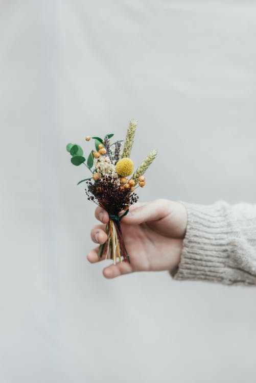 Crop woman showing dry plant bouquet on white background
