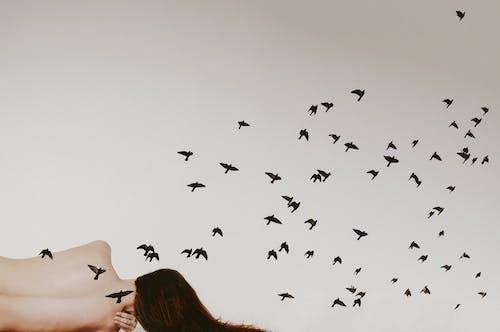 คลังภาพถ่ายฟรี ของ faceless, กระตุ้นความรู้สึก, กระตุ้นอารมณ์, การประสาน