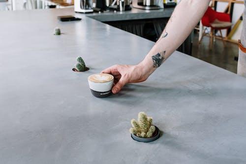 インドア, おとこ, カップ, カフェの無料の写真素材