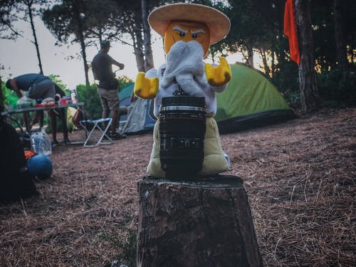 Free stock photo of camera, camping, forest