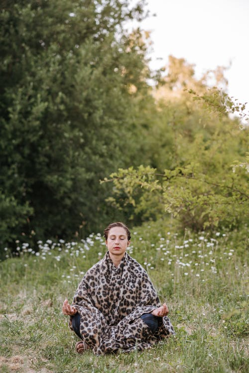 Concentrated woman meditating in Lotus pose on meadow