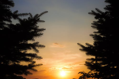 Kostenloses Stock Foto zu akşam, gün batımı, güneş
