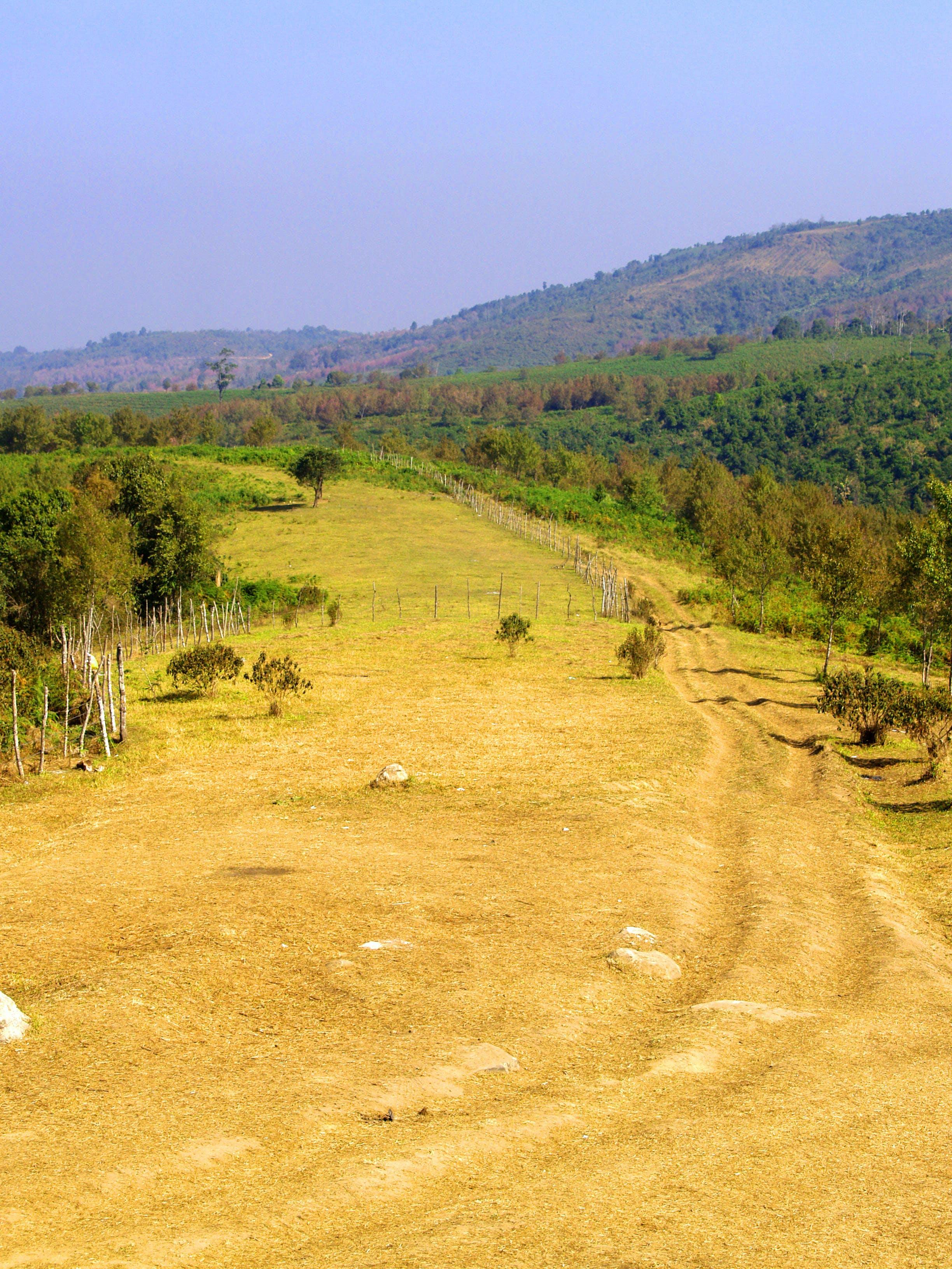 agriculture, environment, farm