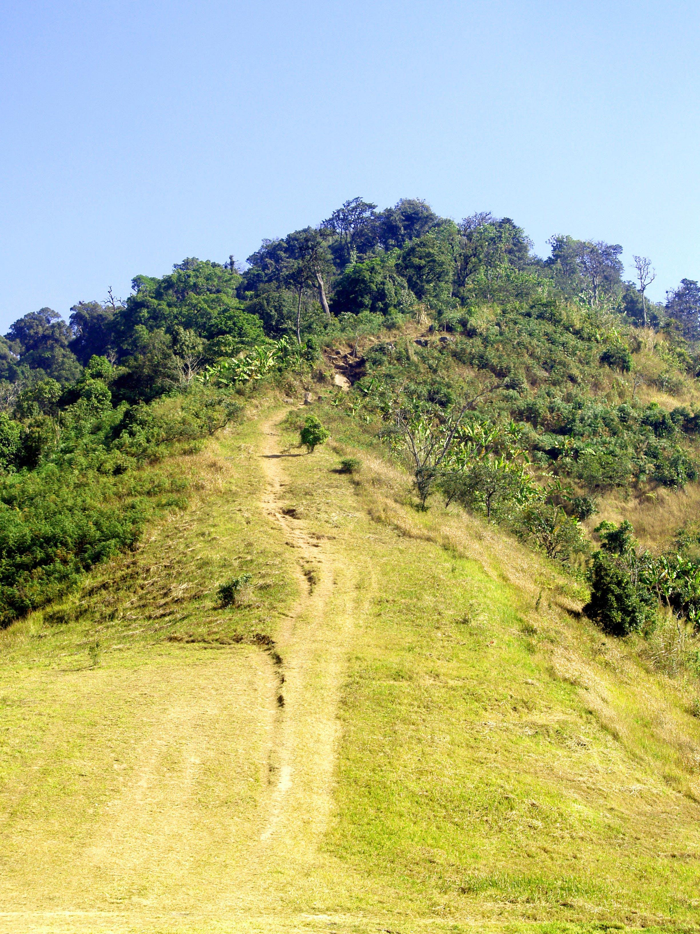 Gratis lagerfoto af bjerg, græs, højland, kraftværker