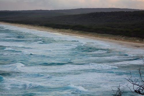 Free stock photo of beach, ocean, shoreline, waves