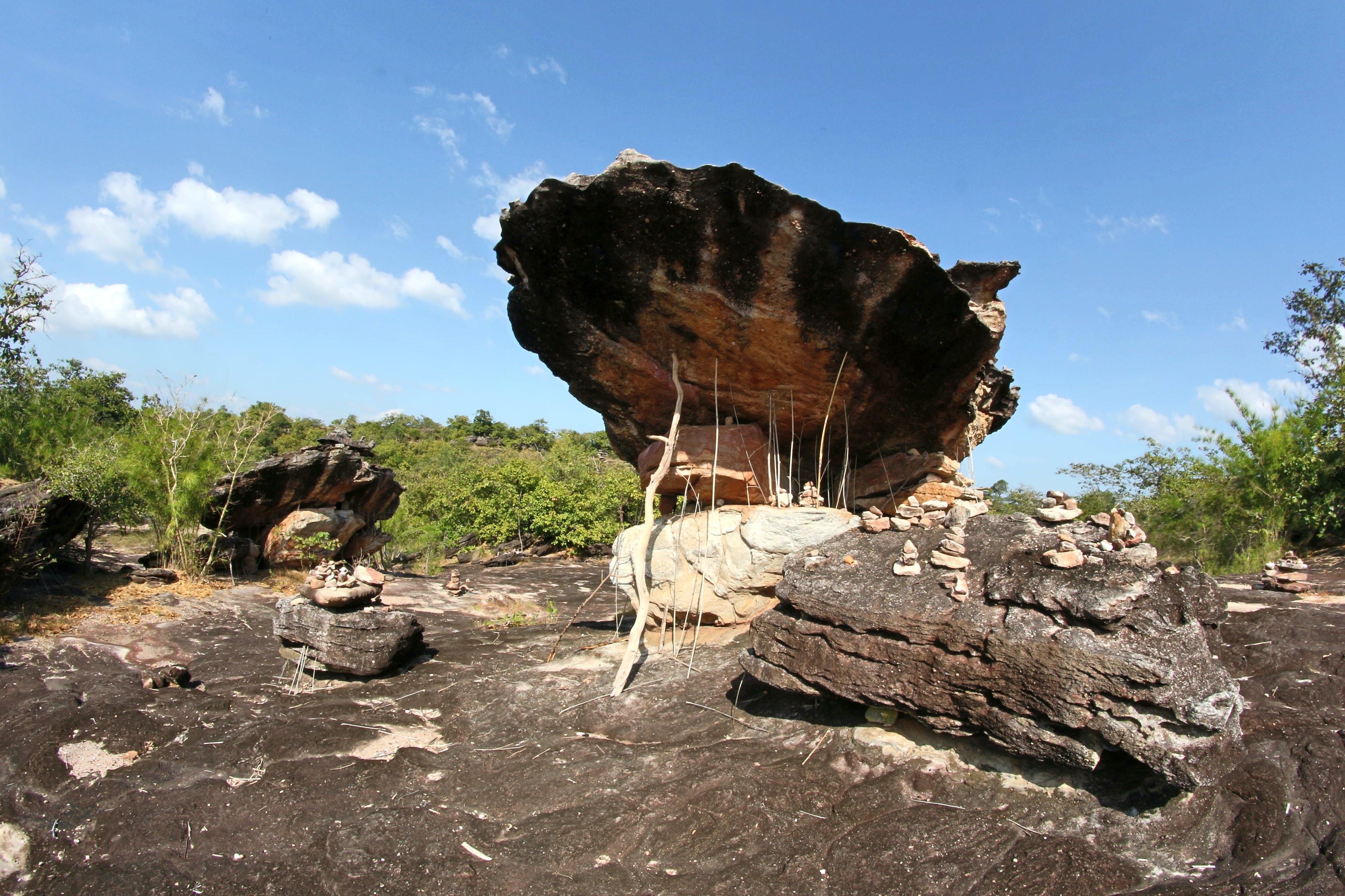 광야, 구름, 나무, 돌의 무료 스톡 사진