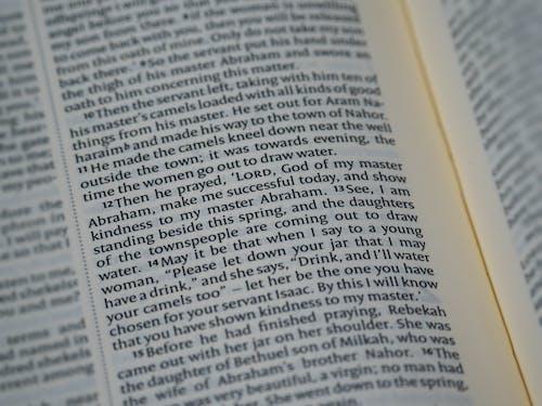 Ingyenes stockfotó Biblia, biblia tanulmányozása, boke, bokeh témában