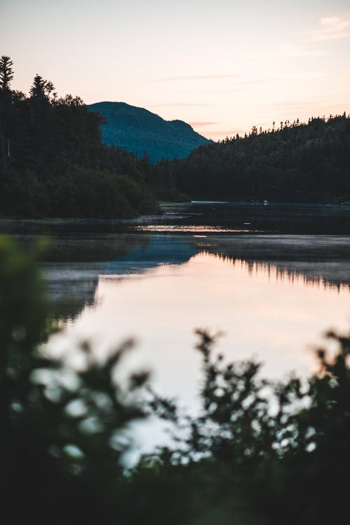 Lake in valley surrounded by greenery in evening
