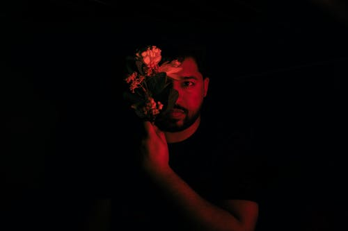 Δωρεάν στοκ φωτογραφιών με λουλούδι, σκοτάδι, φωτογραφία