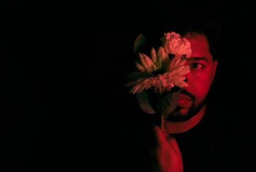Δωρεάν στοκ φωτογραφιών με άνδρας, κόκκινο, λουλούδι, σκοτεινή φωτογραφία