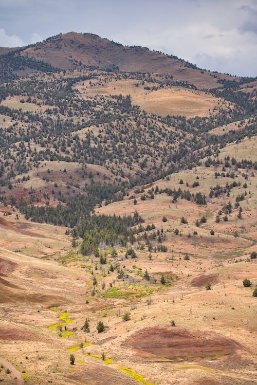 Photos gratuites de aride, collines, collines peintes