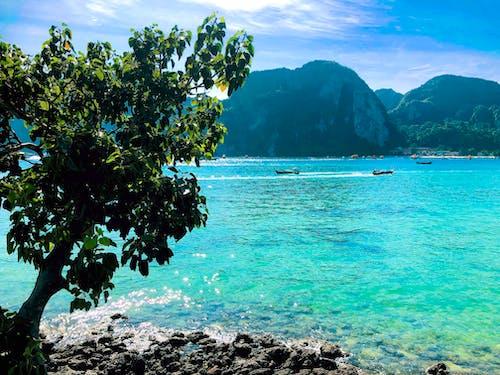 Free stock photo of island, Krabi, phi phi