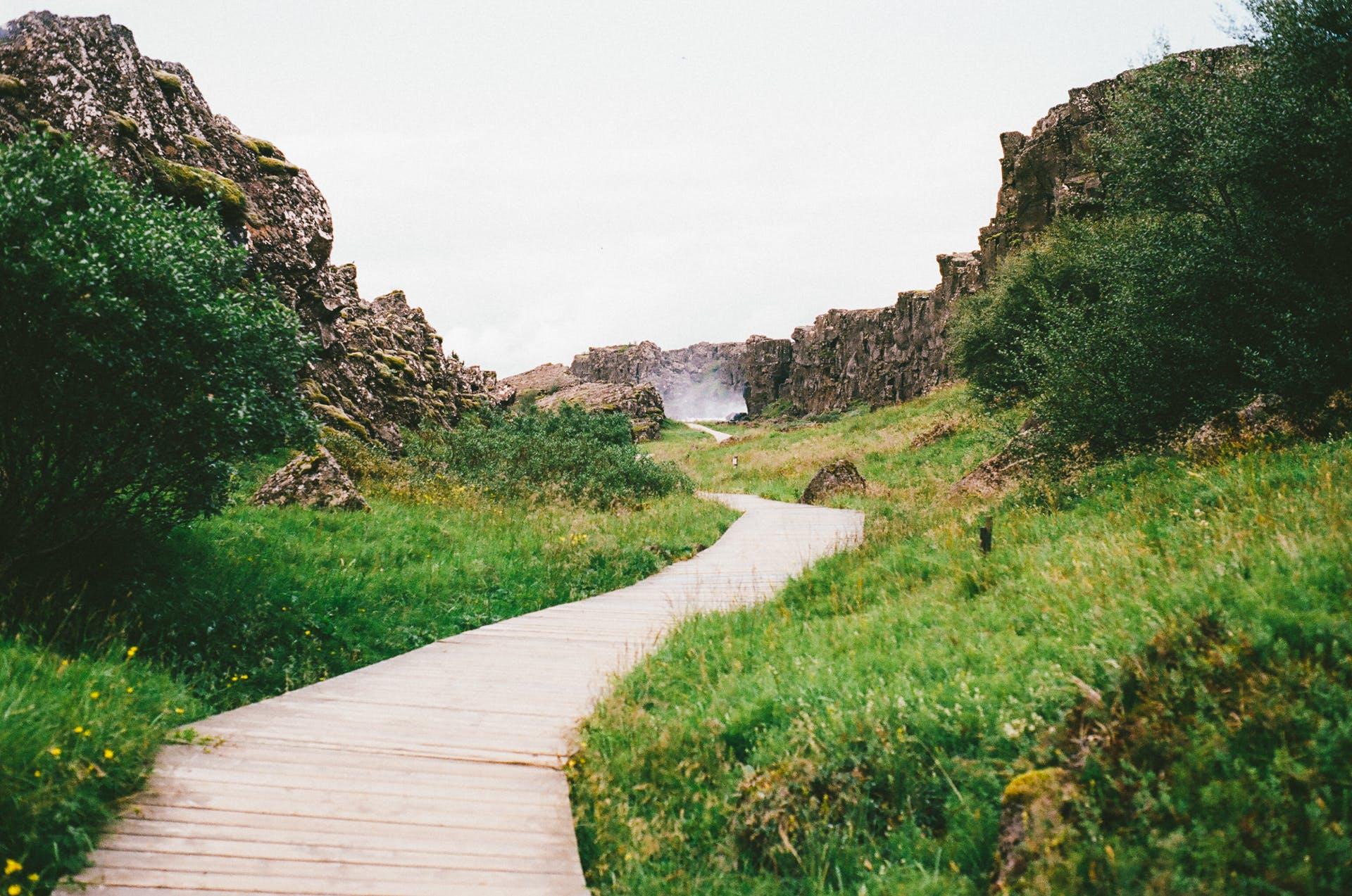 hiking, path, pathway