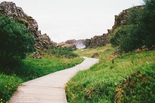 Free stock photo of hiking, path, way, trail