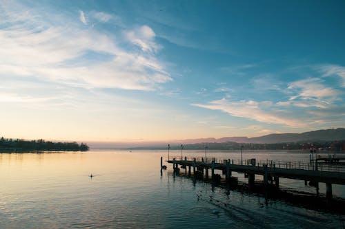 Free stock photo of europe, lake, lake zurich