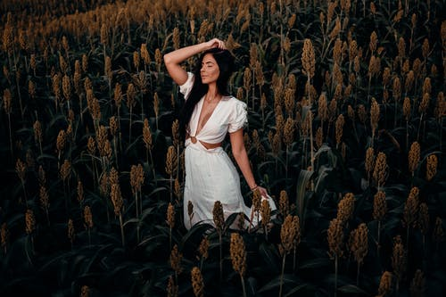 Woman in White Dress Standing on Brown Wheat Field