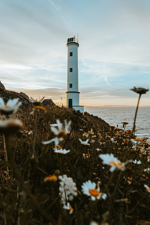 White lighthouse standing on shore