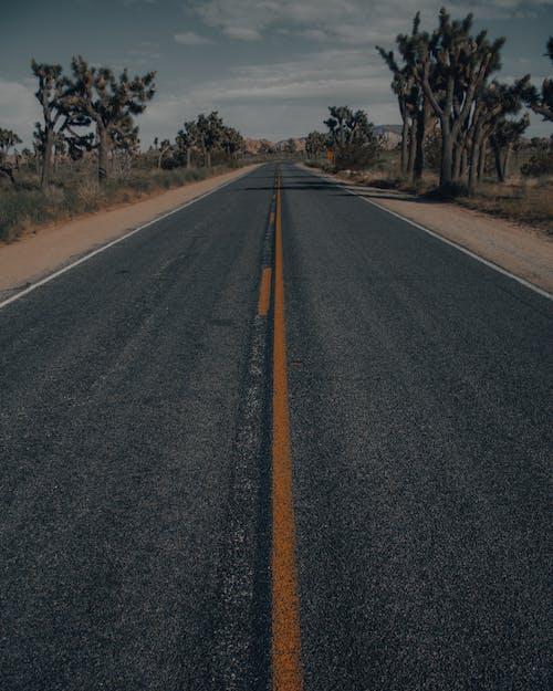Immagine gratuita di asfalto, attaccante, auto, autostrada