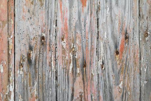Ilmainen kuvapankkikuva tunnisteilla haalistunut puu, puu, puuovi