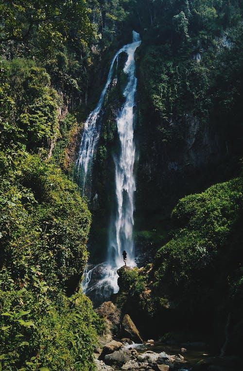 강, 개울, 경치의 무료 스톡 사진