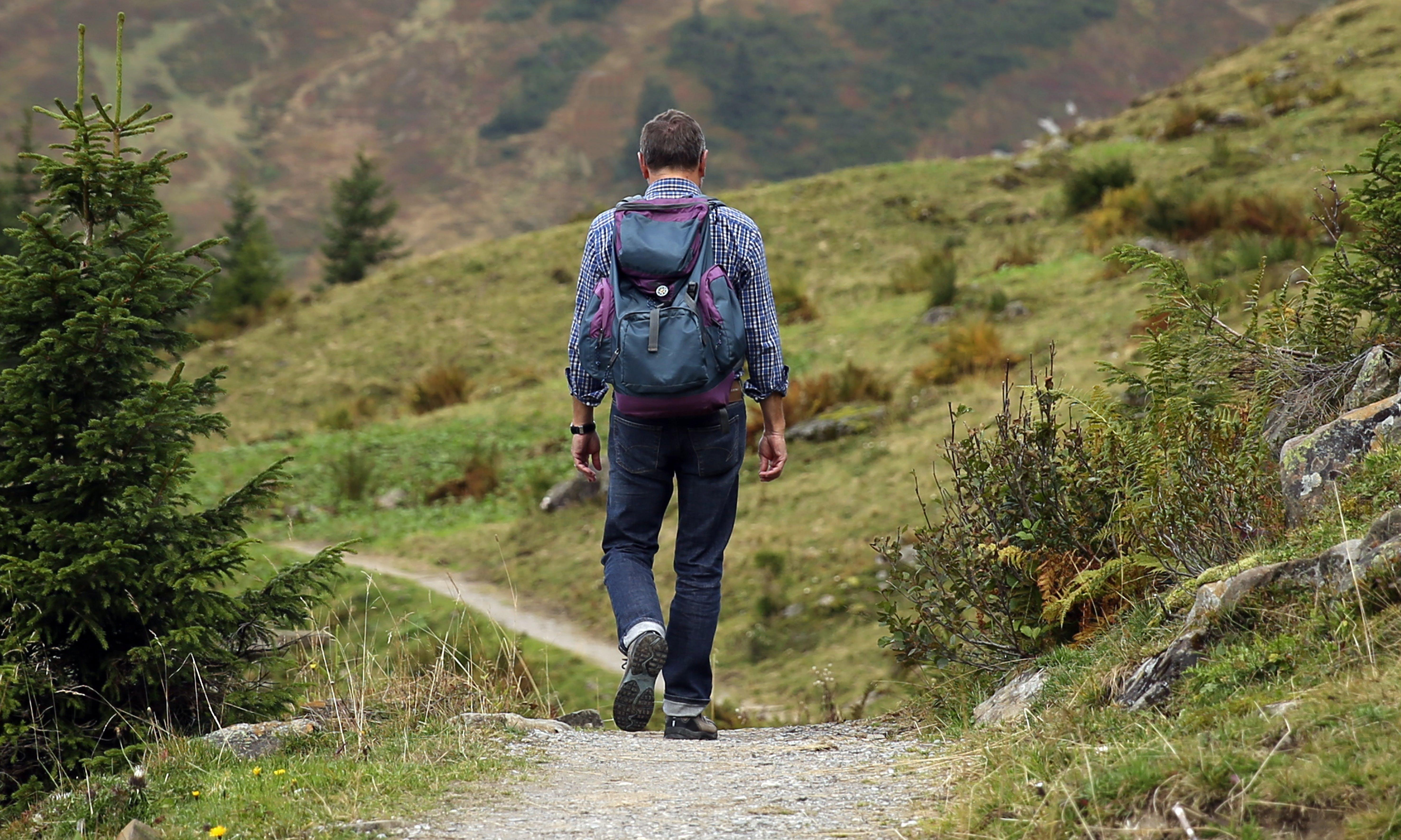 Kostenloses Stock Foto zu abenteuer, berg, bergwandern, bergweg