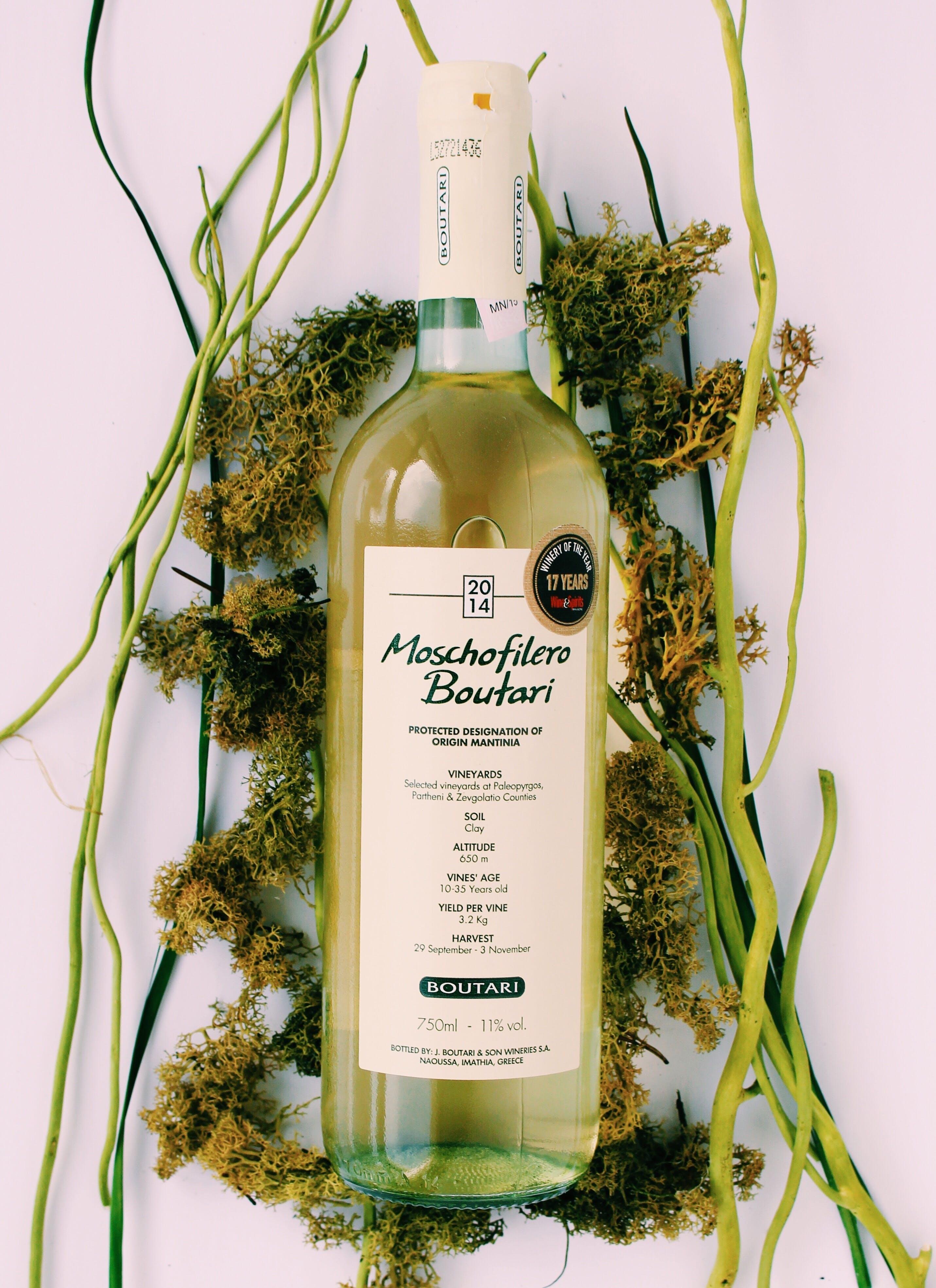 Free stock photo of alcohol, drink, white, vineyard