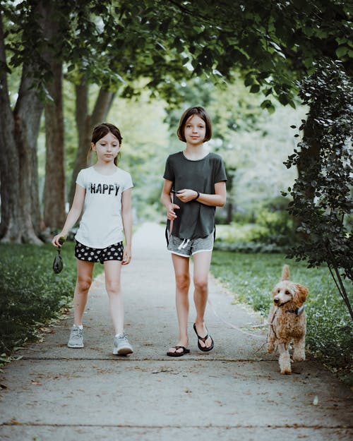 Sisters walking in park with dog