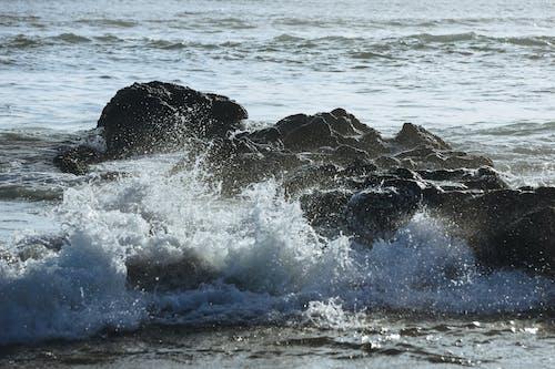Kostnadsfri bild av handling, hav, havsområde, havsstrand