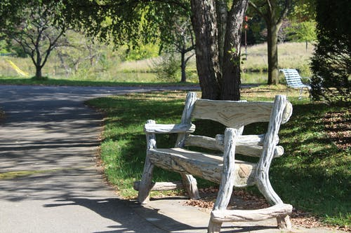Free stock photo of park, park bench, wood bench