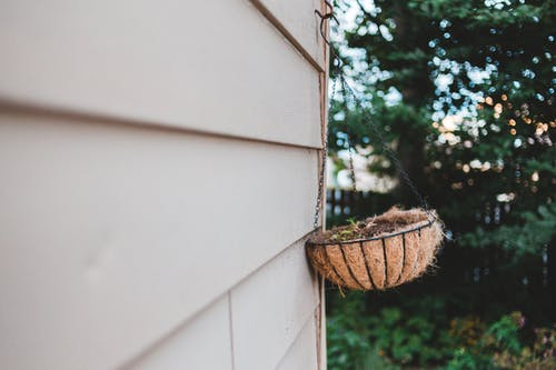 Decorative pot with small plant hanging on wall outdoors