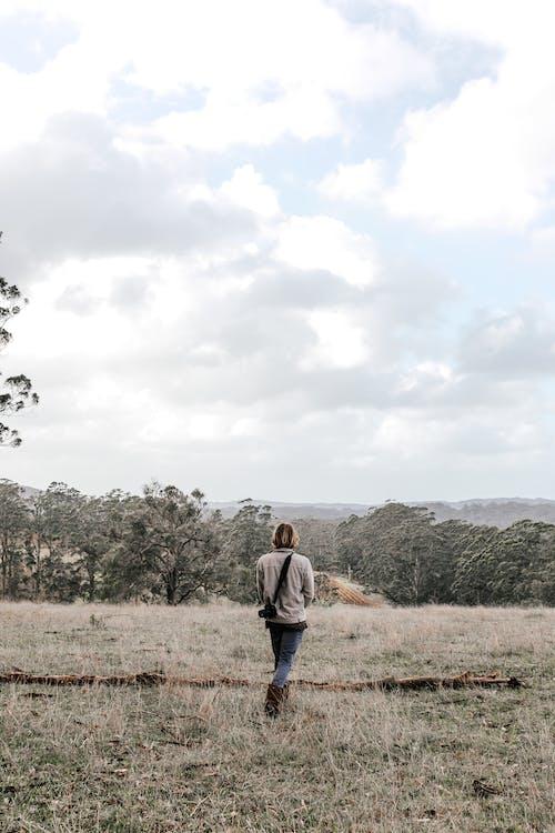 농촌의, 뒷모습, 사람의 무료 스톡 사진