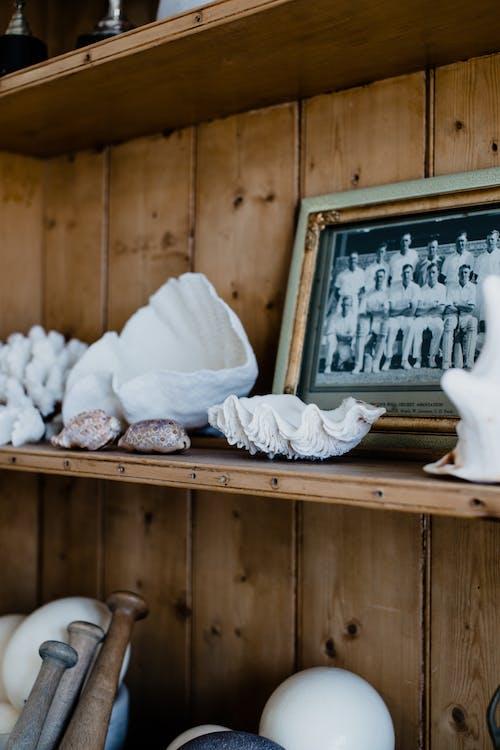 Shelf with sea shells and photo